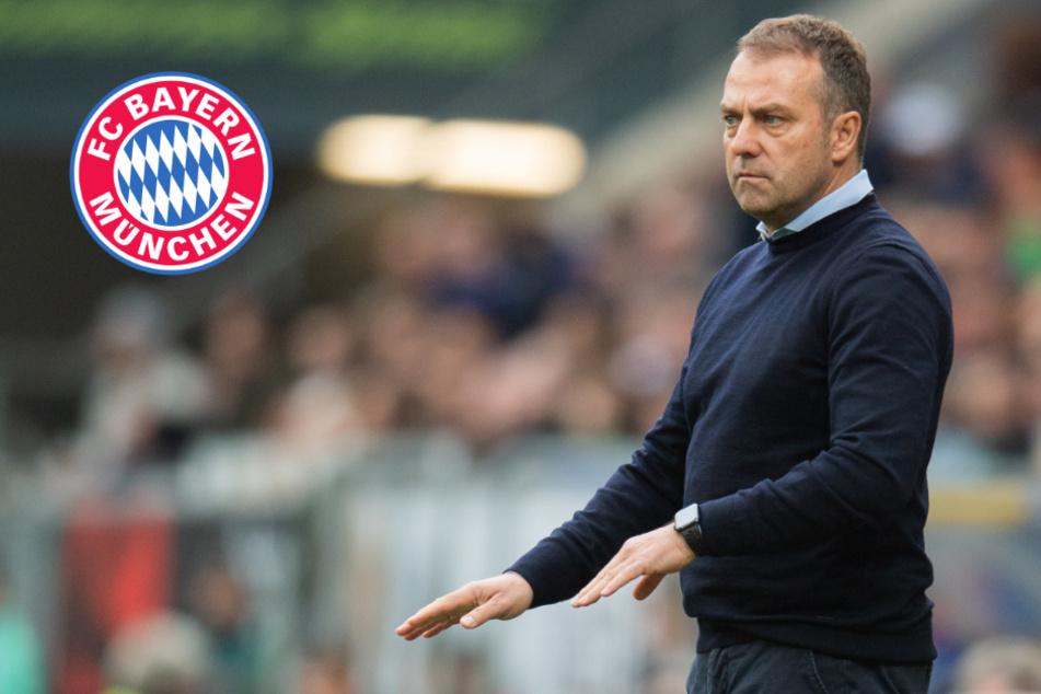 Verzockt? FC Bayern bekommt Konkurrenz bei Trainer Hansi Flick!