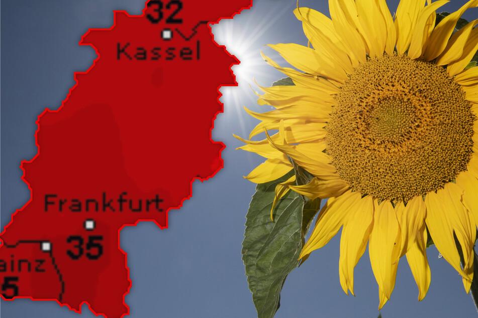 Heiß, heißer, Hessen-Wetter: So krass trifft uns die Hitze-Keule