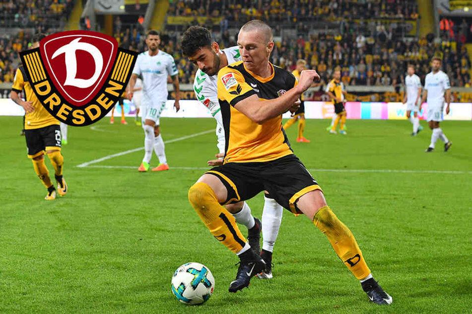 """Mannschaft begeistert von Dynamos Duljevic: """"Er wird uns noch viel Freude bereiten"""""""