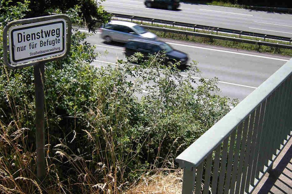 Gerade Fußgängerbrücken lösen bei Autofahrern schnell Unbehagen aus. (Symbolbild)