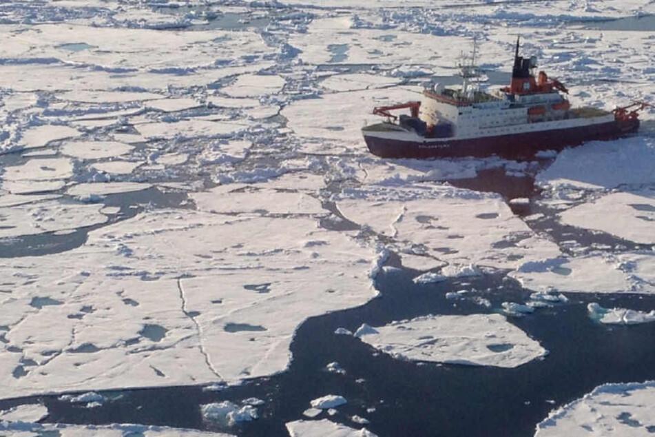 """Der Eisbrecher """"Polarstern"""" auf einer Forschungsfahrt. (Archivbild)"""