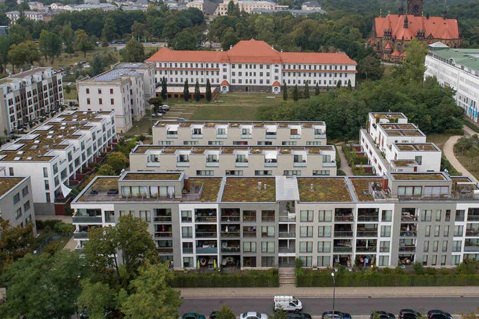 An der Tannenstraße haben viele Bauherren die Vorteile eines Gründachs erkannt. Das ist nicht überall in Dresden so.