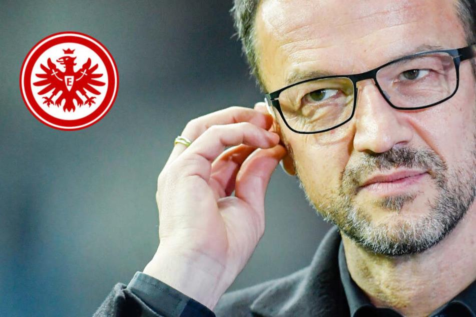 Wer kommt? Eintracht Frankfurt-Vorstand kündigt Transfers an