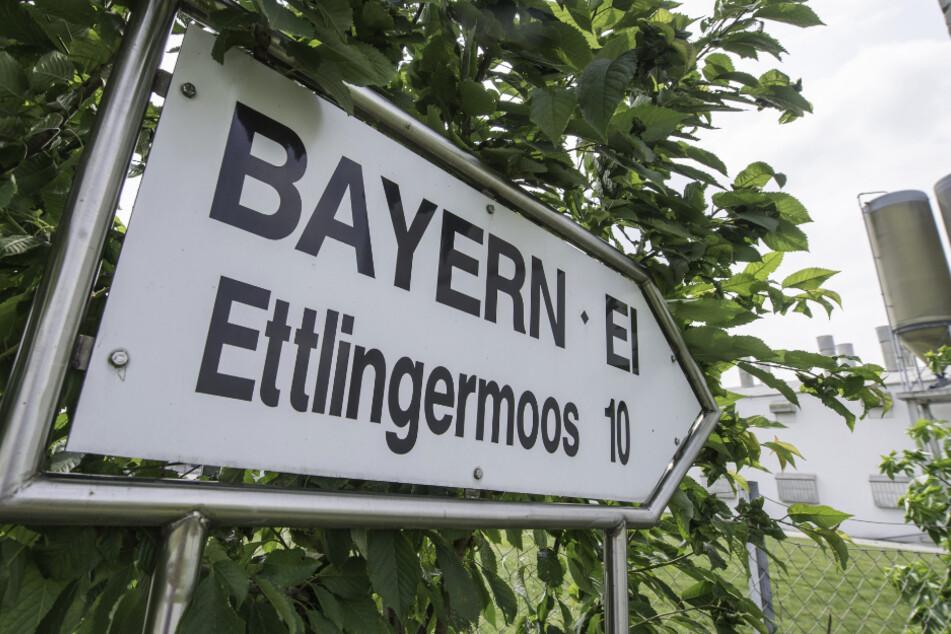 Ein Schild weißt den Weg zum damaligen Betriebsgelände von Bayern-Ei. (Archivbild)