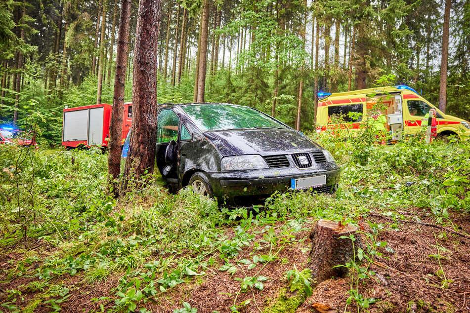 Bei einem Ausweichmanöver kam eine Seat-Fahrerin (64) von der Straße ab und fuhr in einen Wald. Dort blieb das Auto zwischen einem Baum und einem Baumstumpf stecken.