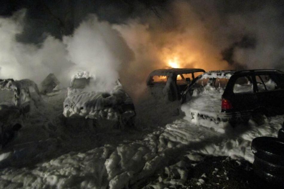 Insgesamt brannten auf dem Autohausgelände sechs Fahrzeuge ab.