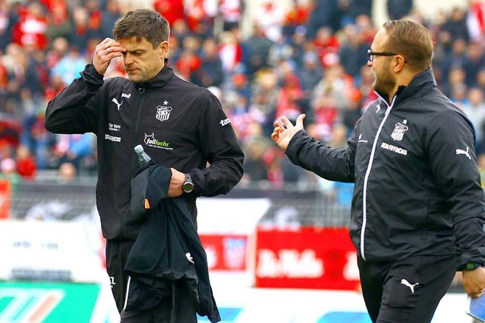 Zwickaus Trainer und sein Co. beratschlagen über die aktuelle Situation.