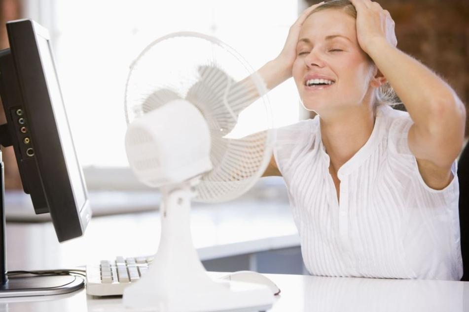 Ventilatoren sorgen im Büro für leichte Abkühlung.