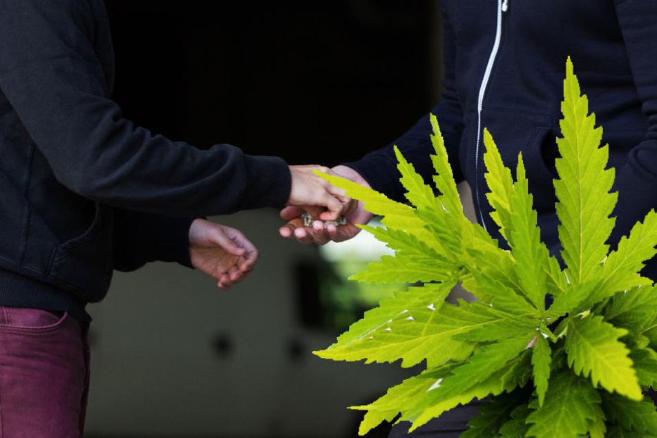 Nichts mit untertauchen: Polizei sprengt möglichen Drogenring