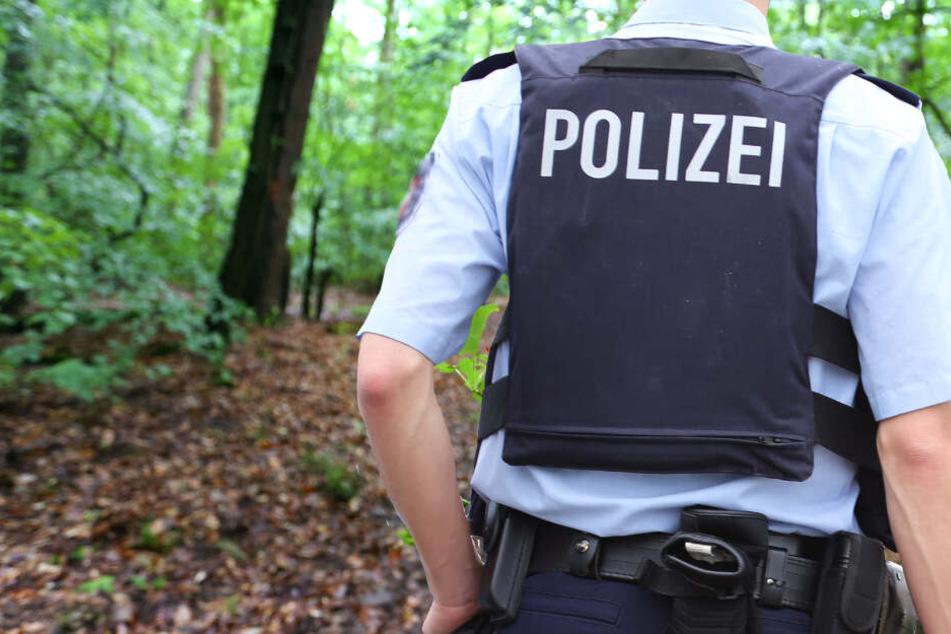 Die Vergewaltigung ereignete sich in dem Naturschutzgebiet Dönche in Kassel (Symbolbild).