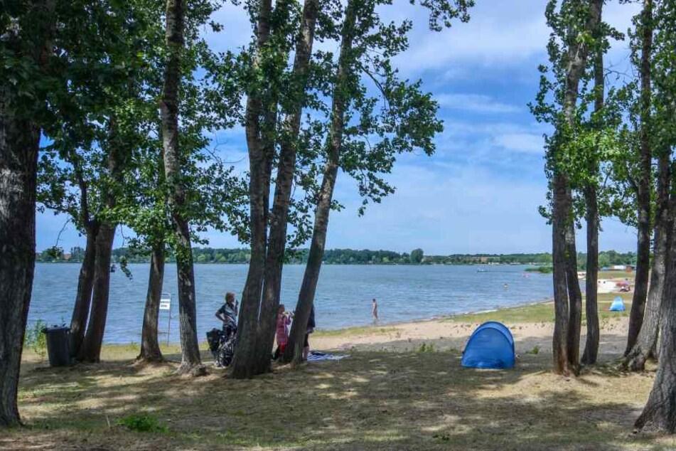 Der Barleber See in Magdeburg musste wegen Blaualgenbefalls geschlossen werden.