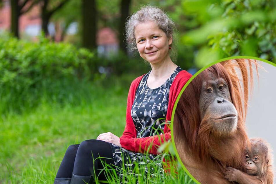 Das Herz dieser Sächsin schlägt für Orang-Utans