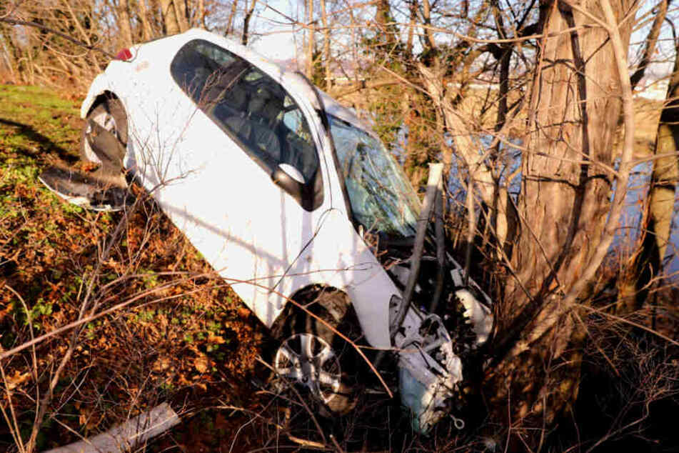 An einem Baum kam der Peugeot zum Stehen.