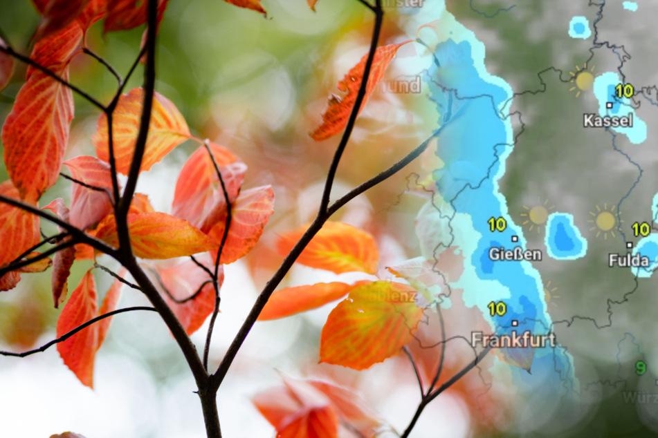 Der Herbst gibt am Wochenende in Hessen richtig Vollgas