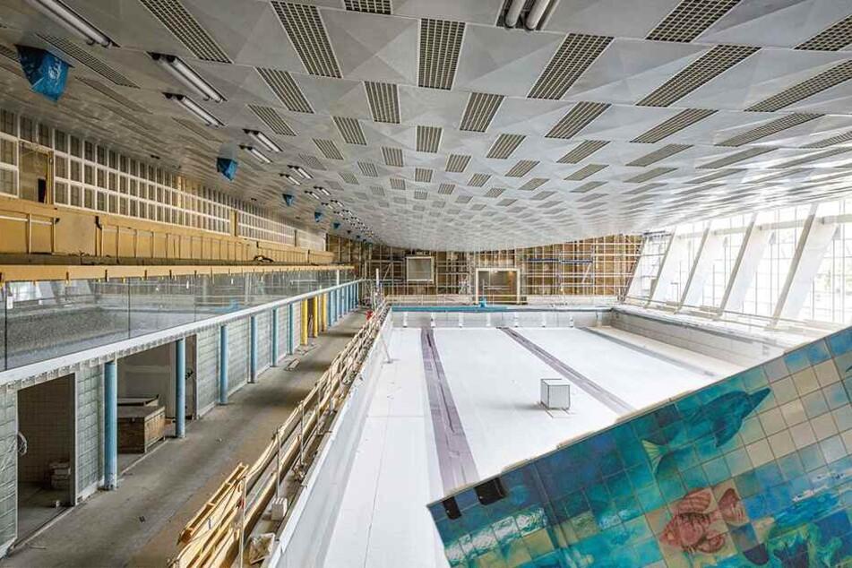 Alt, aber neu: Schwimmhalle am Freiberger Platz glänzt mit neuen Fliesen und DDR-Mosaik