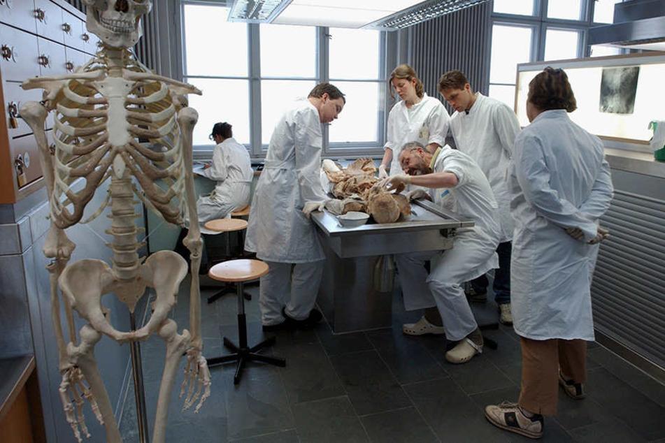 Medizinstudenten der Berliner Humboldt-Universität nehmen an einer Lehrvorführung teil, bei der es um das Sezieren einer Leiche geht. (Symbolbild)