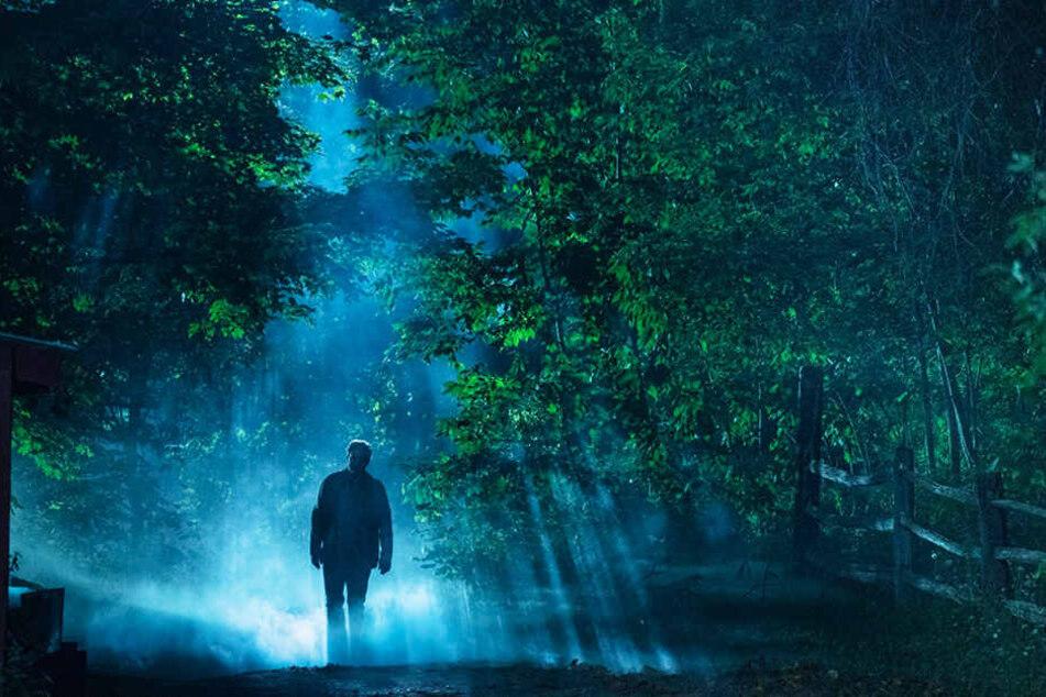In diesem Wald sollte man abends nicht alleine sein. Doch Dr. Louis Creed (Jason Clarke) schlägt alle Warnungen in den Wind.