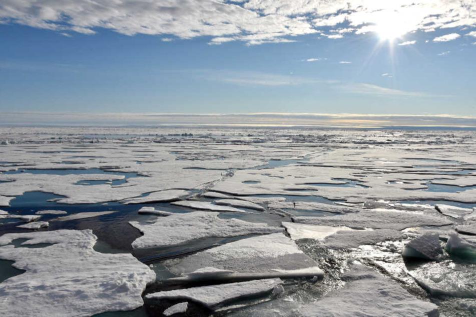 Auf dem Arktischen Ozean am Nordpol schwimmen mehrere Eisplatten. Der Meeresspiegel steigt generell mit dem Klimawandel - doch regional mit extremen Unterschieden.