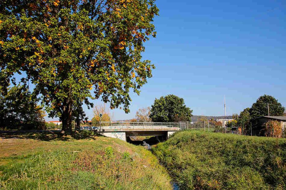 Die Brücke über den Niedersedlitzer Flutgraben soll mit Stelzen höhergelegt werden.
