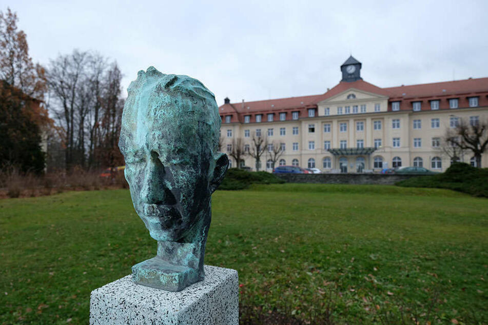 Eine Büste des Chirurgen Heinrich Braun (1862-1934). Nach ihm ist das Zwickauer Krankenhaus benannt.