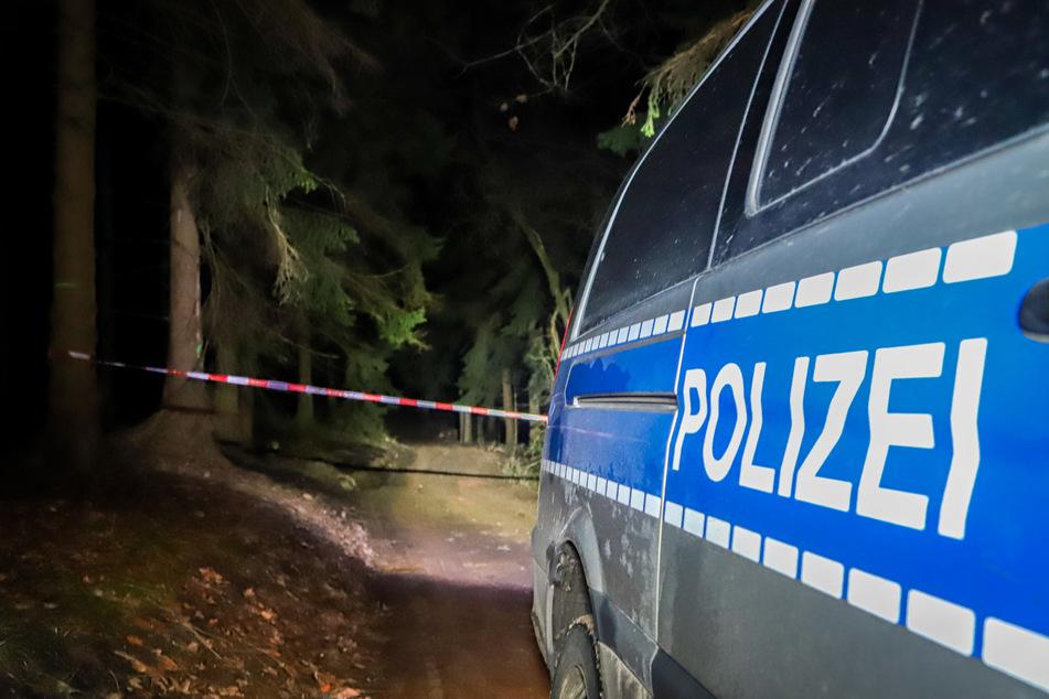 In diesem Waldstück zwischen Chemnitz-Einsiedel und Dittersdorf wurde am späten Mittwochabend eine Weltkriegsbombe gefunden. Diese soll am Donnerstag entschärft werden.