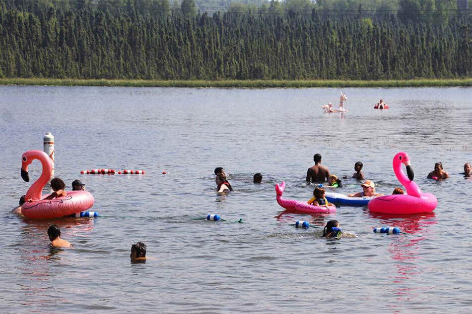 Baden statt Bibbern. Kinder spielen mit aufblasbaren Flamingos und schwimmen am Goose Lake.