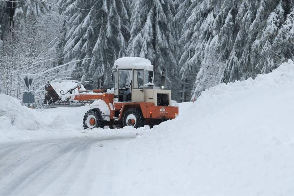 Lebensgefahr! Behörden sperren verschneite Wälder in Sachsen