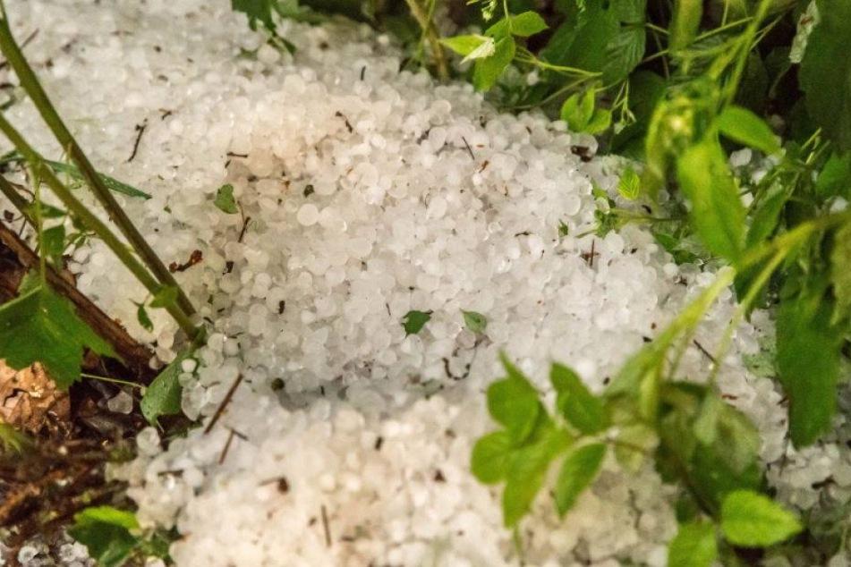 Blitz und Donner: Unwetter hält Erzgebirge auf Trab