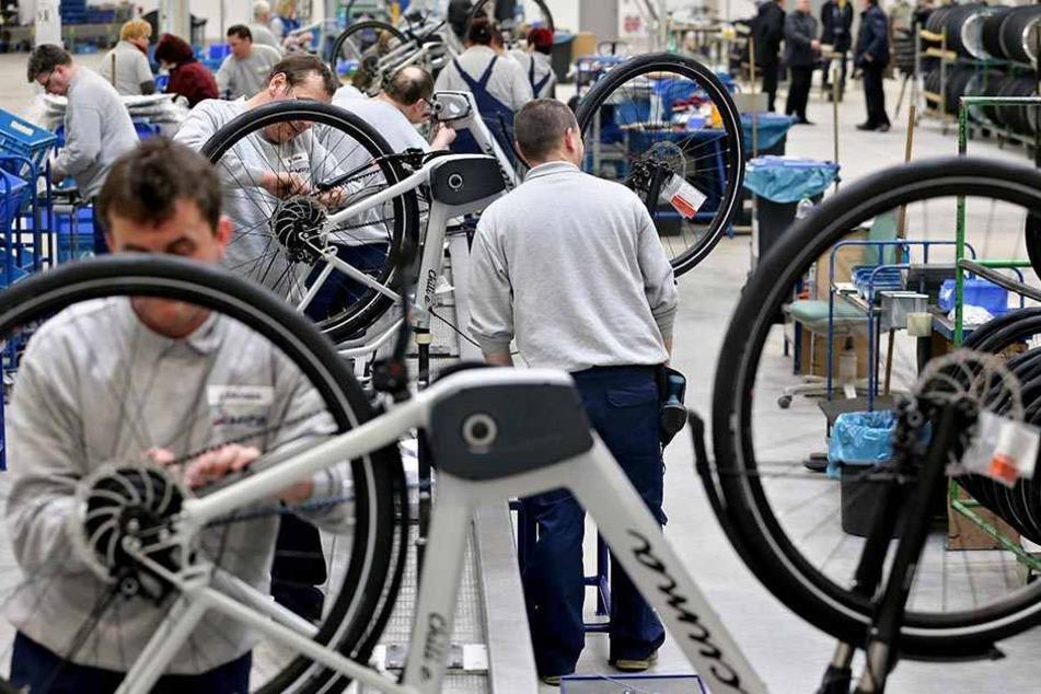 Übernahme von insolventem Fahrradhersteller Mifa erwartet