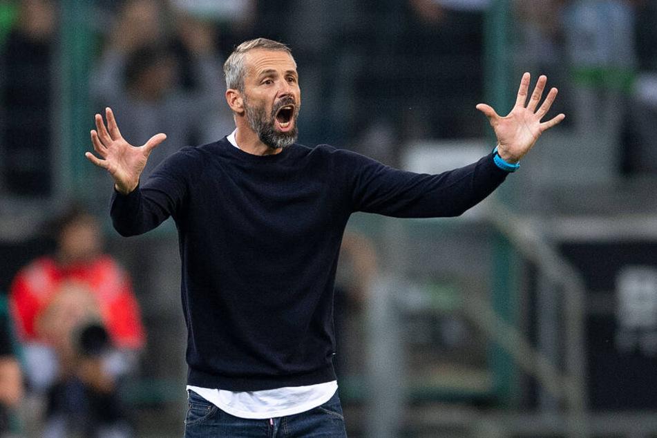 Marco Rose (42) ist neuer Trainer bei Gladbach geworden. Der gebürtige Leipziger trifft am Freitag erstmals in einem Ligaspiel auf RB.
