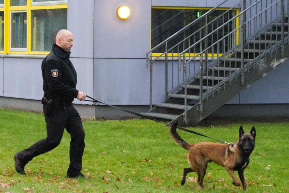 Leipziger Forschern ist möglicherweise ein Coup in der Verfolgung von Tätern durch Mantrailer gelungen. (Symbolbild)