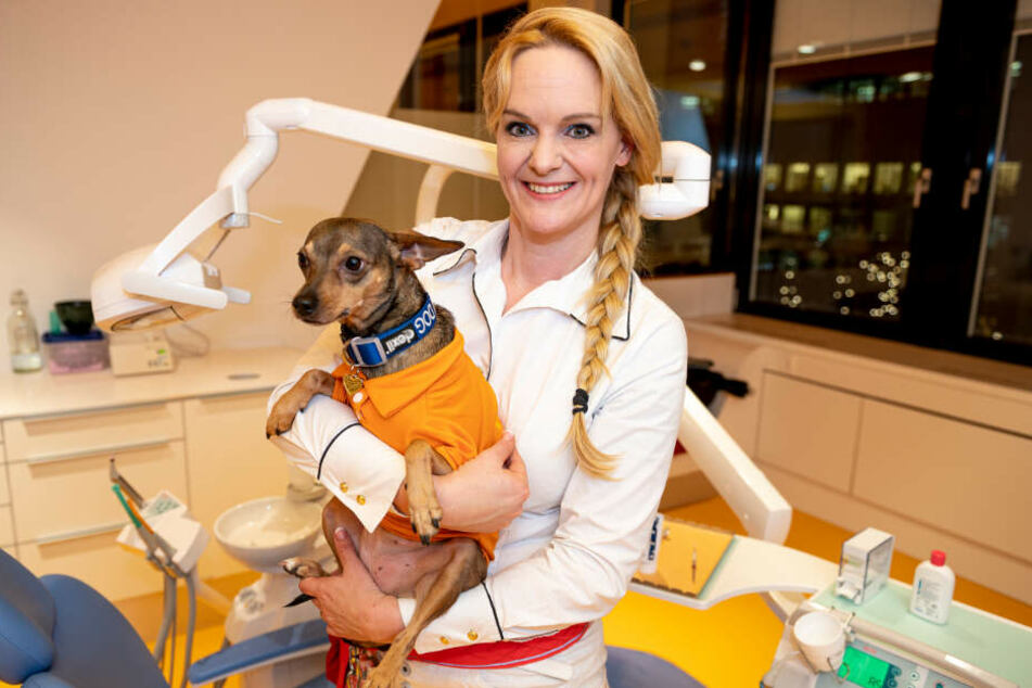 Birte Habedank, Kinder-und Jugendzahnärztin steht mit Peppi, Therapiehund, in einem Behandlungzimmer einer Zahnarztpraxis in Berlin-Charlottenburg.