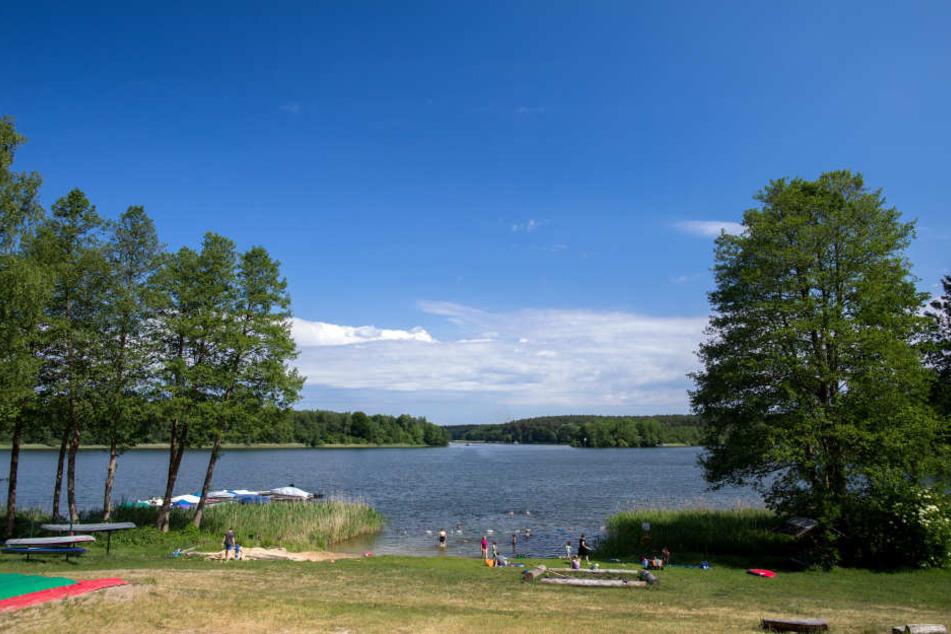 Im Süßen See im Seegebiet Mansfelder Land (Sachsen-Anhalt) ist am Mittwochnachmittag ein Mann ertrunken. (Symbolbild)
