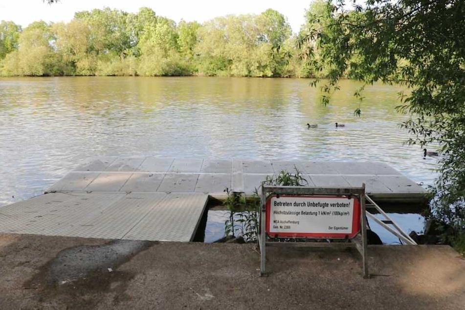 Das tragische Unglück ereignete sich in Höhe des Arthur-von-Weinberg-Stegs in Frankfurt-Fechenheim