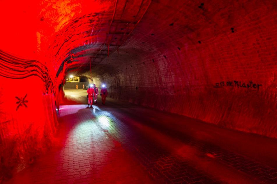 Wohin mit dem Atommüll? Bayern kritisiert Gorleben-Aus, Bundesbehörde wehrt sich