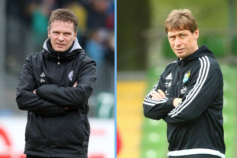Läuft die Zeit von Trainer Sven Köhler (r.) beim CFC ab? Ex-Kiel-Coach Karsten Neitzel (l.) steht angeblich schon in den Startlöchern.