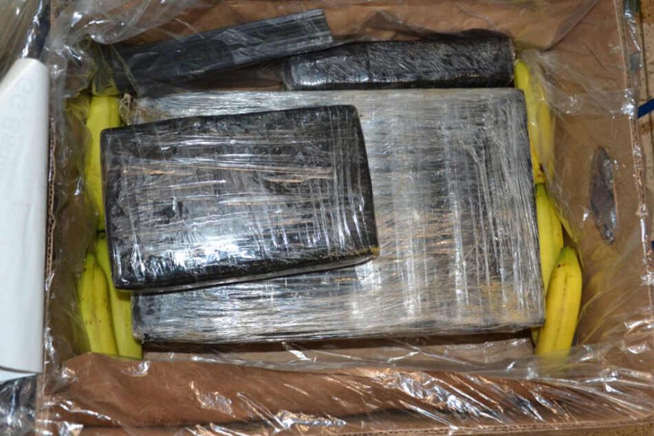 Halbe Tonne Koks! Polizei stellt Drogen in Aldi-Filialen sicher