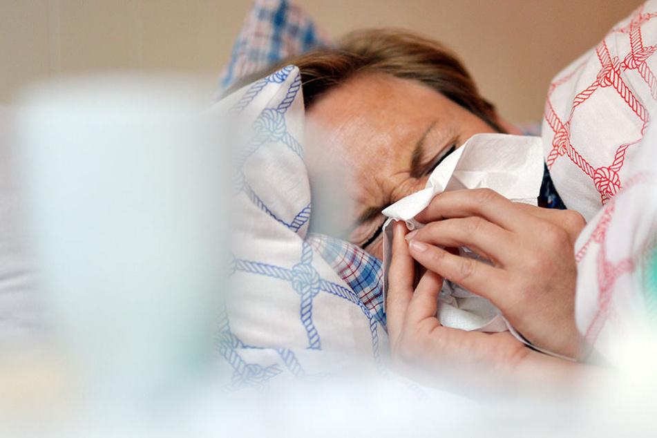 Auch Erkältungen zählen zu den häufigsten Arbeitsausfällen in Sachsen.