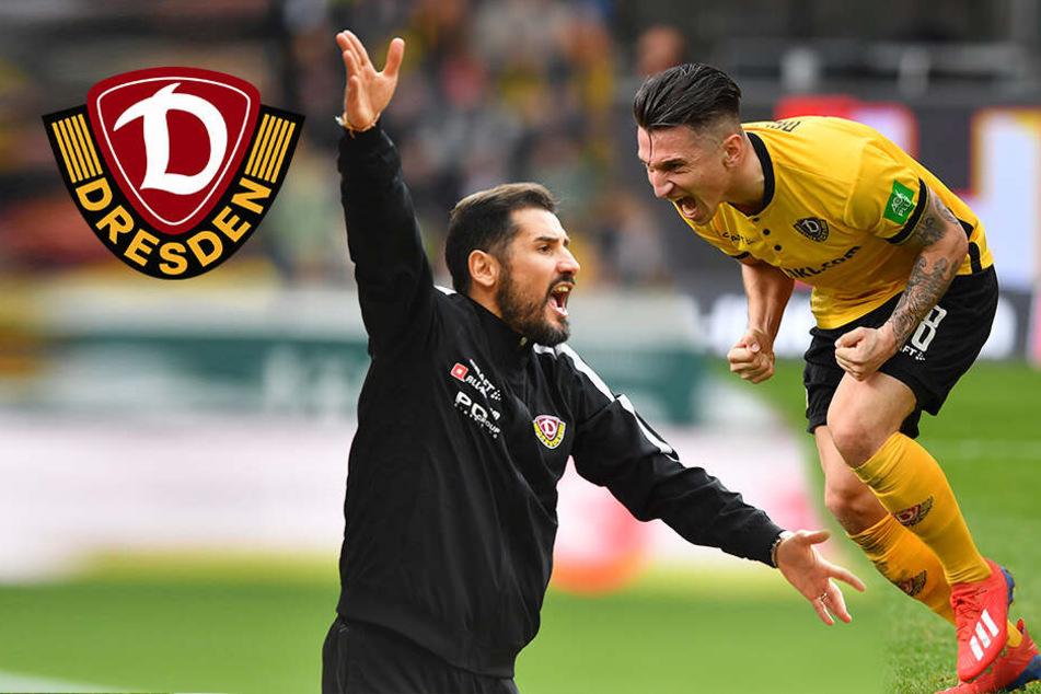Nach 0:2! Dynamo holt bei Fiel-Debüt Punkt gegen Bochum