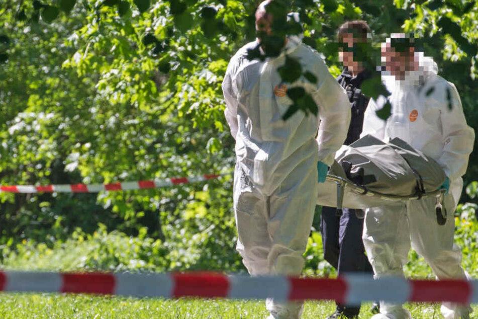Vermisster Mann wird tot in Waldstück entdeckt: Ist Ehefrau tatsächlich unschuldig?