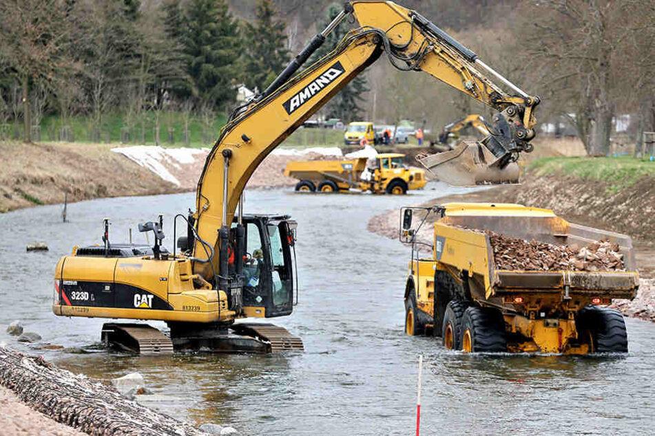 Für besseren Flutschutz: In diesem Jahr wurde in Roßwein tonnenweise Sedimente aus der Freiberger Mulde gebaggert.