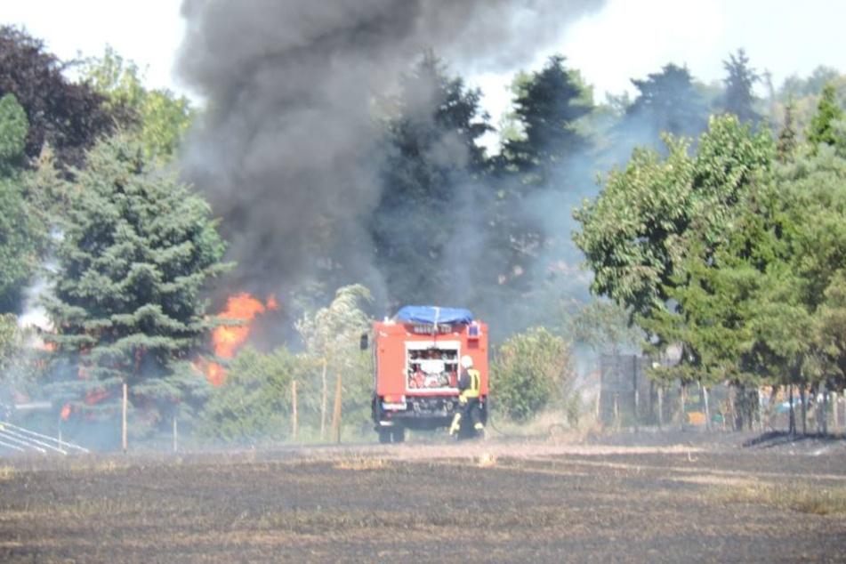 Feuerwehren versuchen, angrenzende Grundstücke zu retten. Eine Hecke steht bereits in Brand.