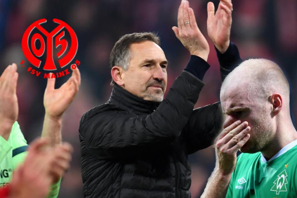 Bravo: Mainz-Trainer Beierlorzer begeistert mit dieser Fair-Play-Geste