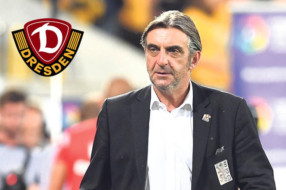 Minge und Dynamo sauer auf das Verhalten der Leipziger