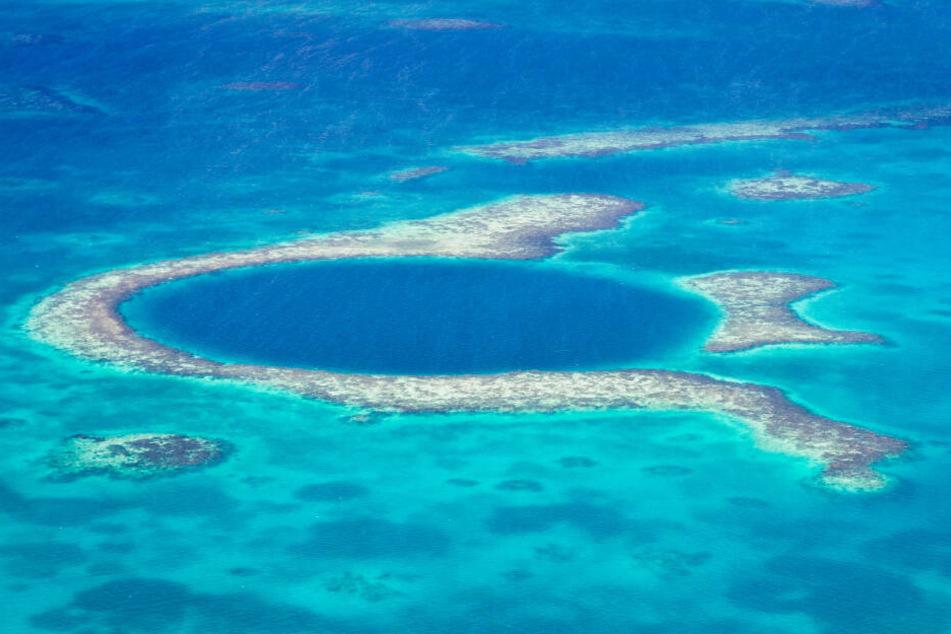 """Das """"Great Blue Hole"""" vor der Küste von Belize."""