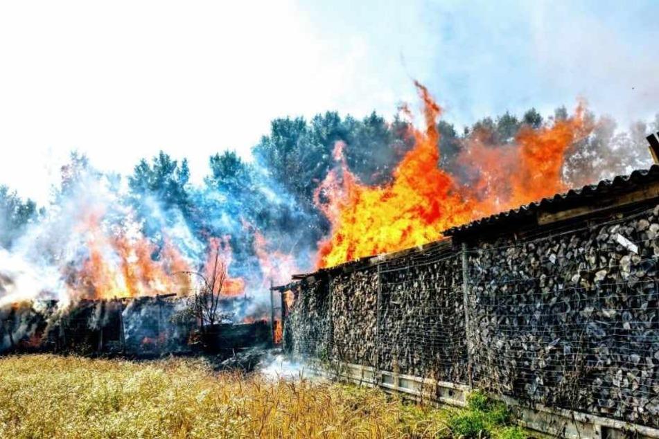 Die Sperrung aufgrund eines Böschungsbrands bei Schmorkau hat bis nach Nordrhein-Westfalen Auswirkungen. (Symbolbild)