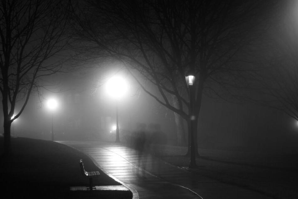 Frau im Stuttgarter Rosensteinpark sexuell genötigt