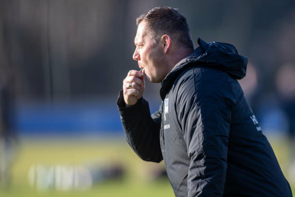 Trainer Pal Dardai (44) pfeift bei seinem ersten offiziellen Training mit der Mannschaft von Hertha BSC.
