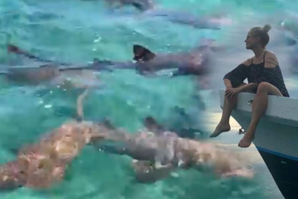 Katja Burkard soll mit Haien schwimmen und trifft eine Entscheidung