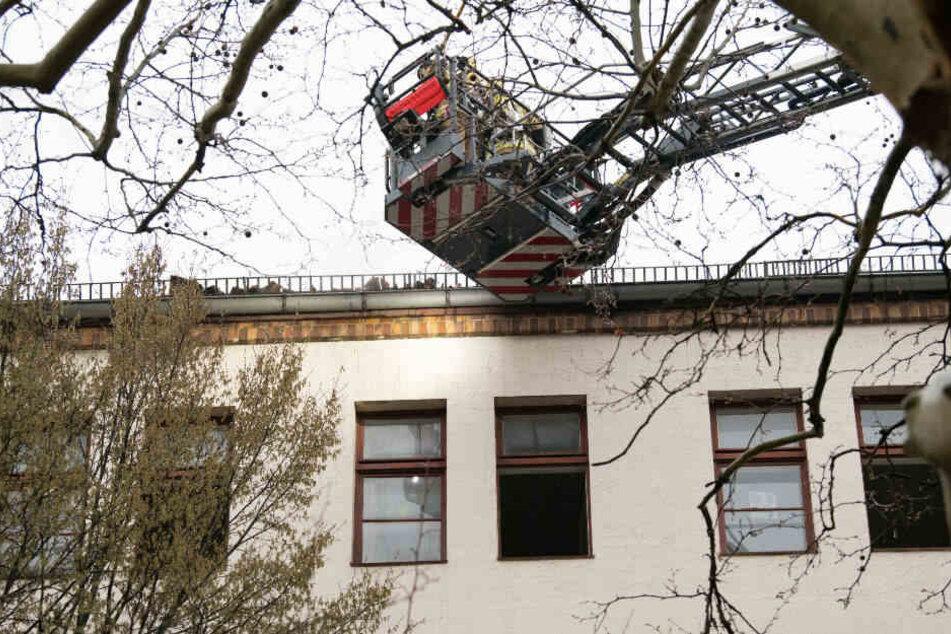 Mit einer Drehleiter mussten zwei Anwohner gerettet werden.